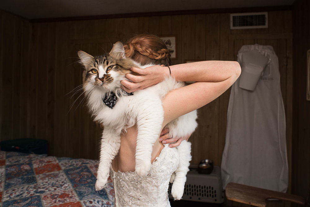 31 bride with pet cat crookshanks.jpg