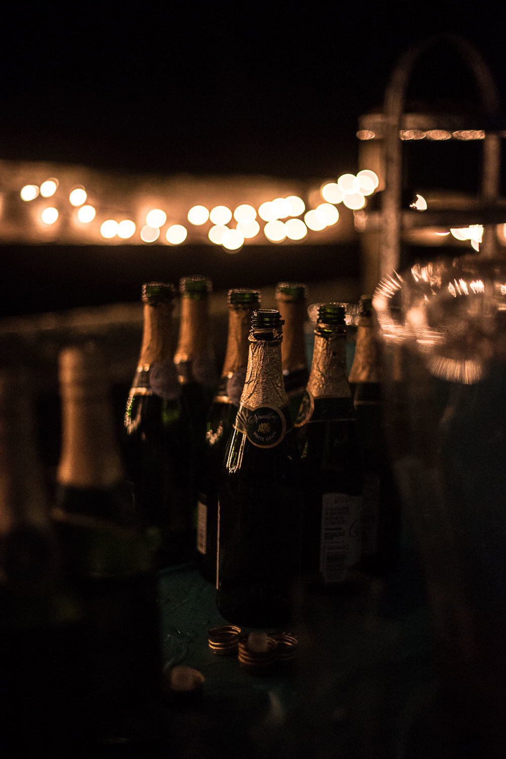 196 champagne toast at wedding.jpg