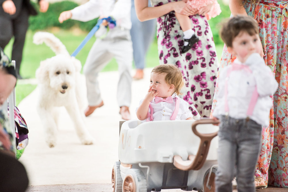 62 kids and golden doodle at wedding.jpg