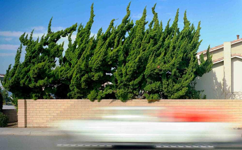 27-Juniper-#7,-Costa-Mesa,-2005.jpg