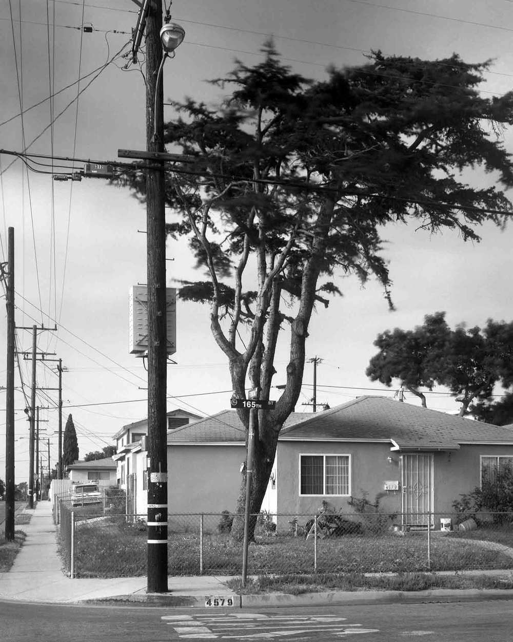 24-Cedar-#10,-Lawndale,-2002.jpg