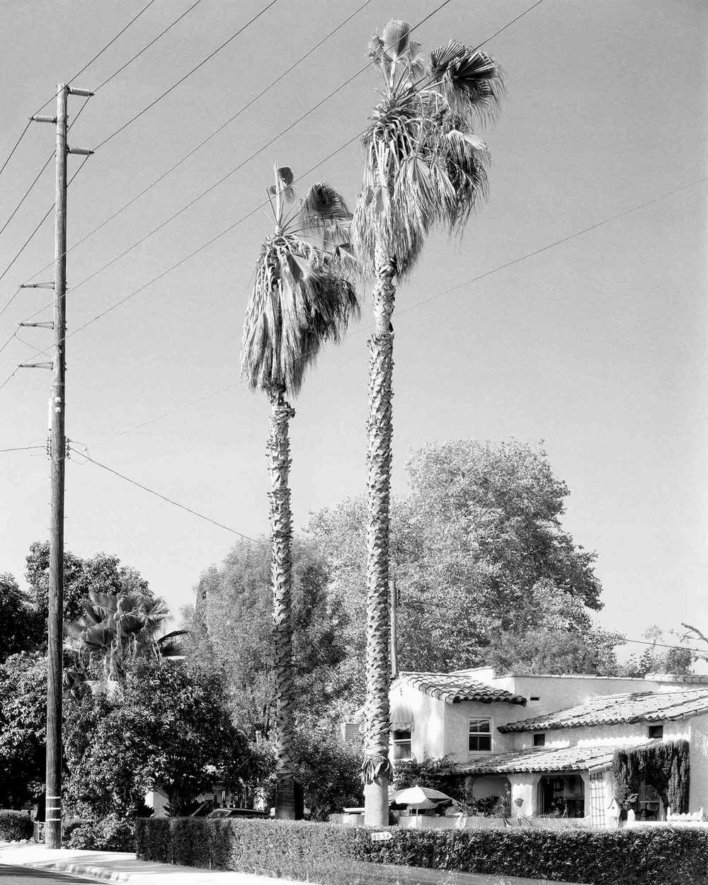 36-Palm-#46,-Temple-City,-2004.jpg