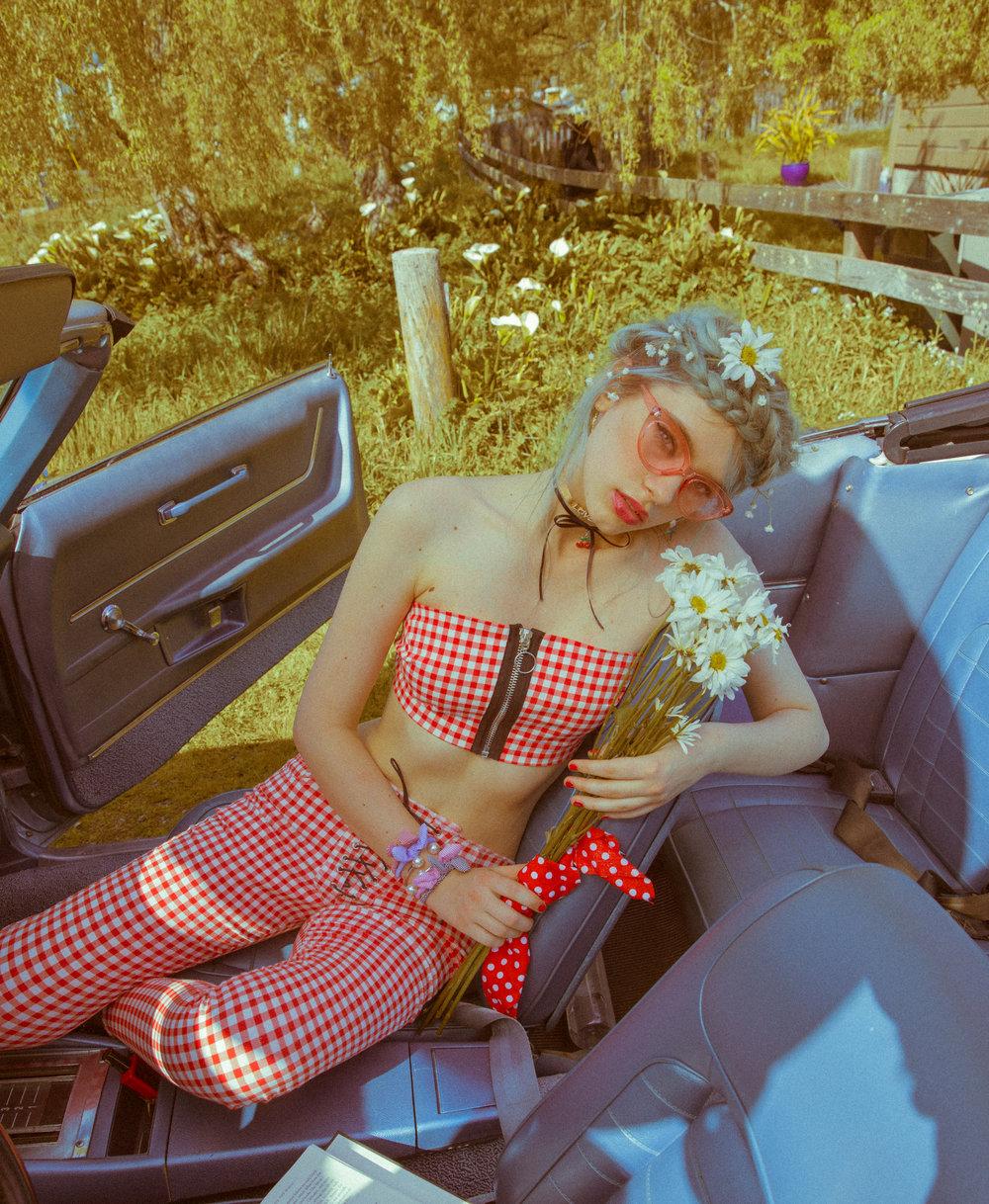 LolitaColor-3.jpg