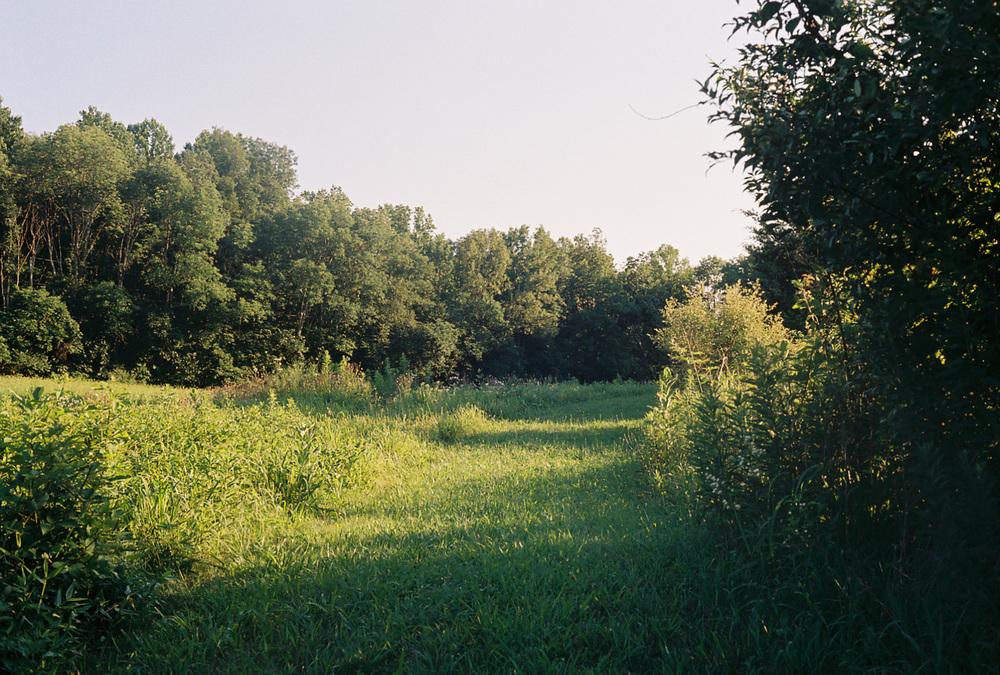 fieldpathweb.jpg