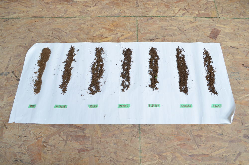 Soil samples from 7 sites in the field.
