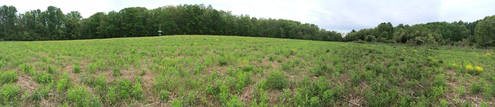 Panoramic view of 7 bird/oil feeders in field.