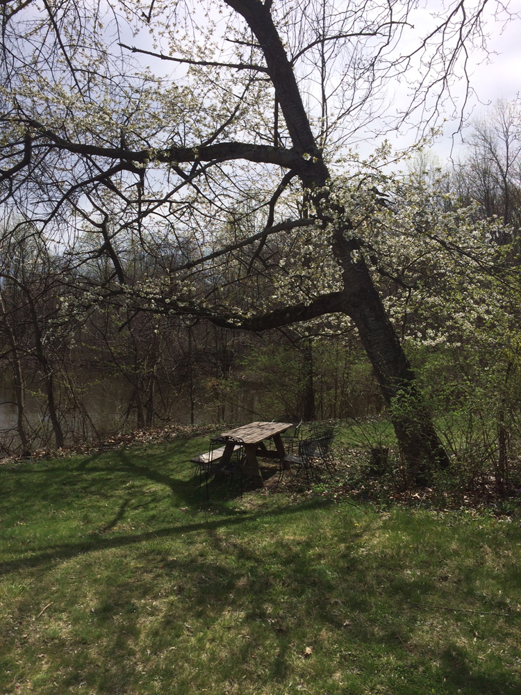 spring.web.jpg