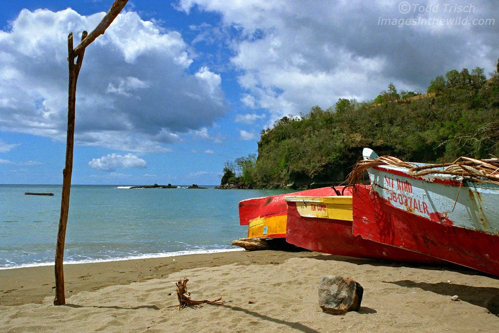 Colorful Caribbean Boats, St. Lucia