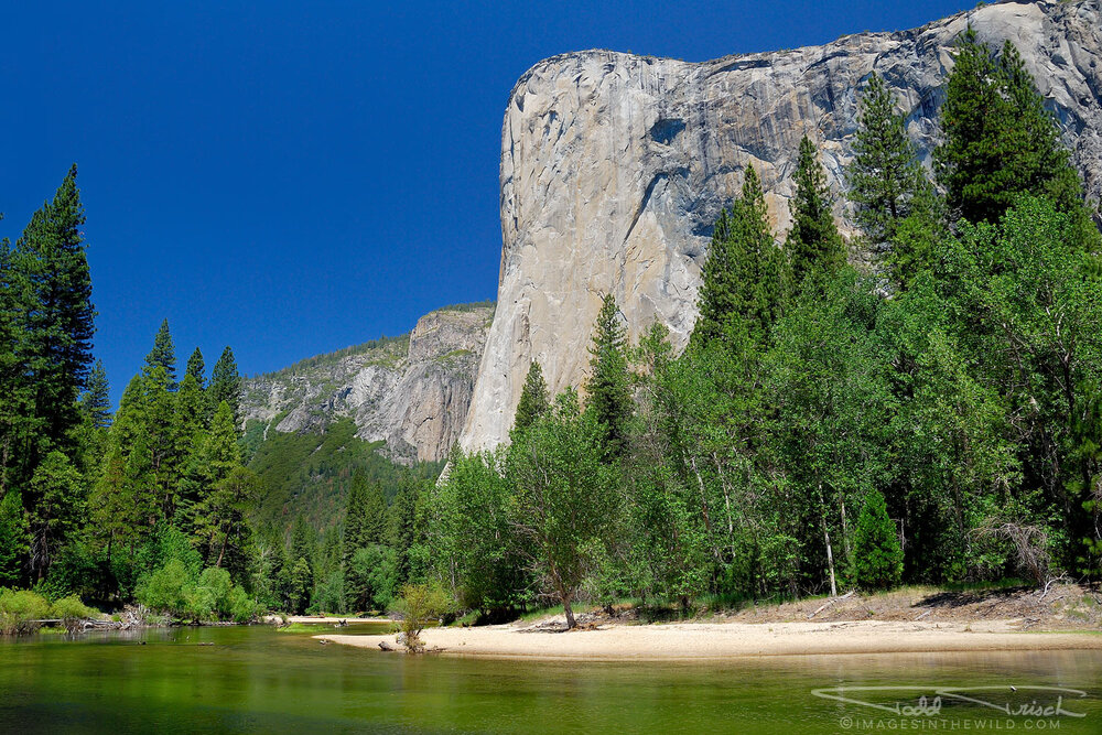 El Capitan above The Merced