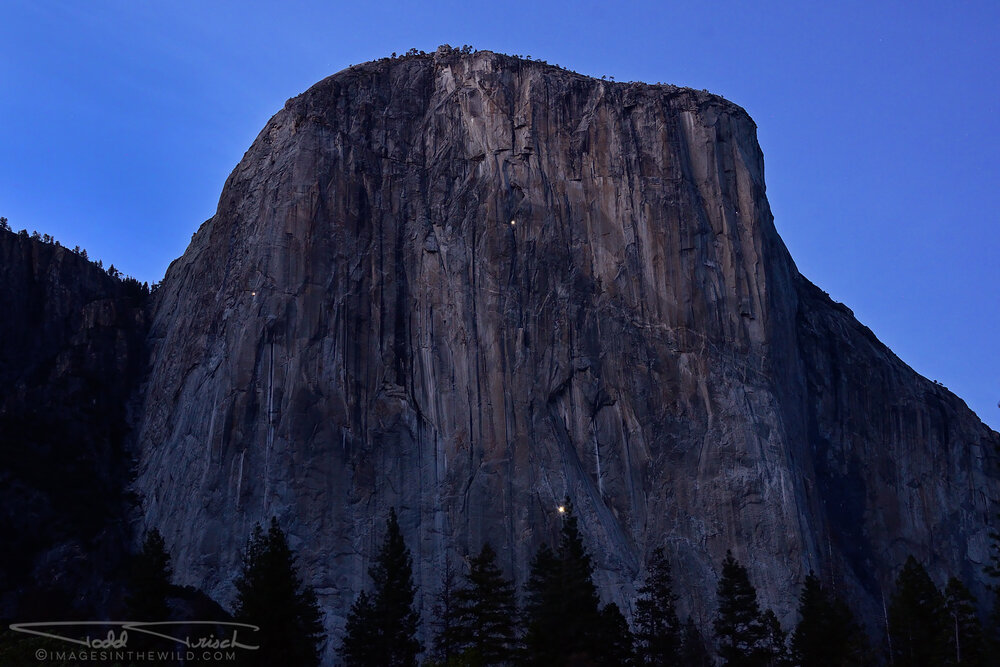 Rock Climber Lights on El Capitan