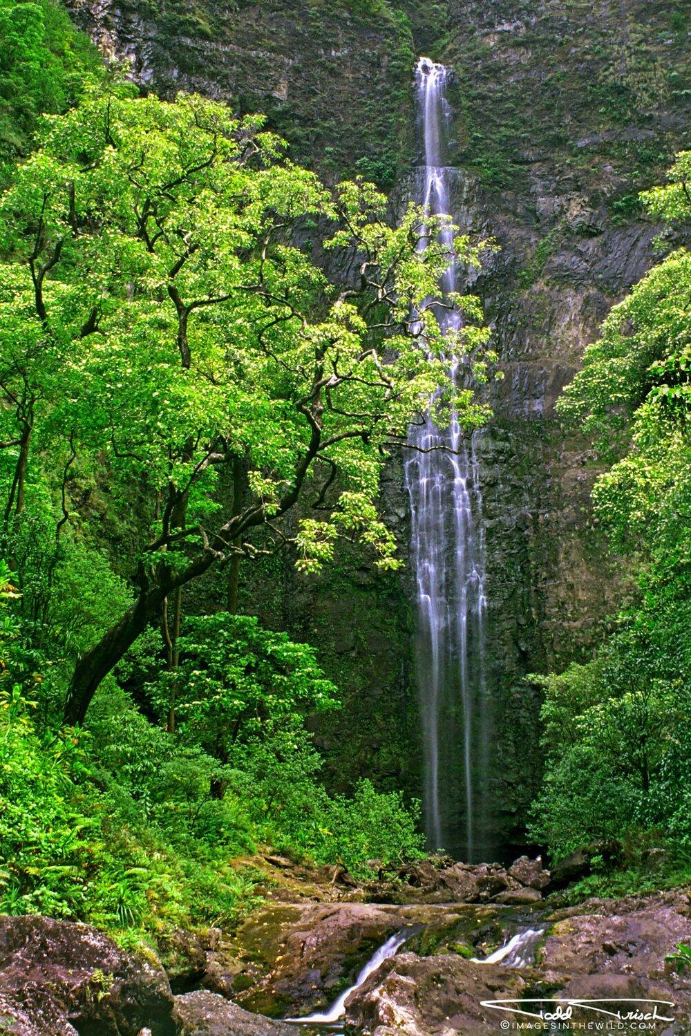 Hanakapi'ai Falls - Kauai