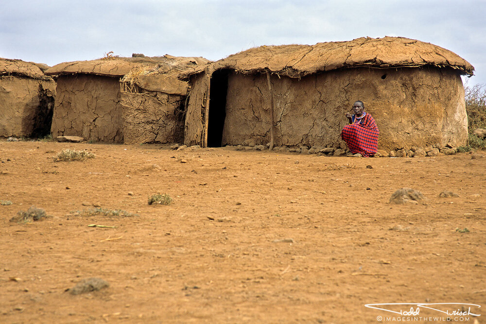 Maasai Village Woman