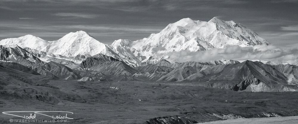Mt McKinley Panorama