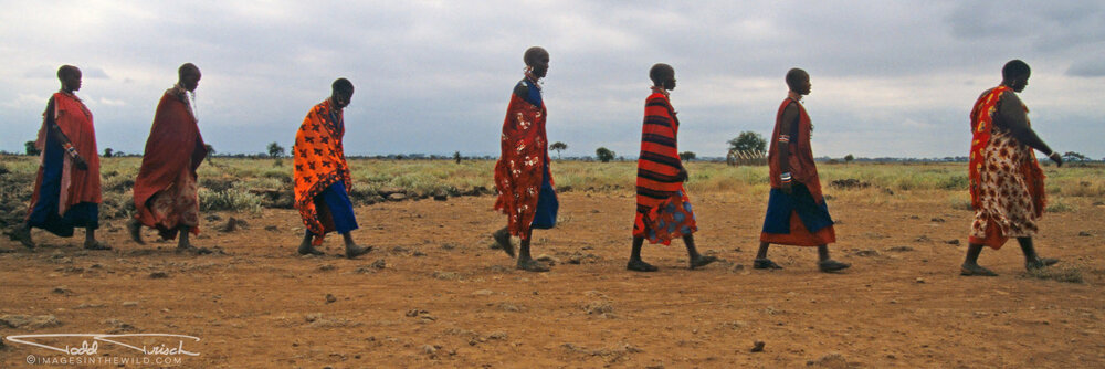 Silhouetted Maasai