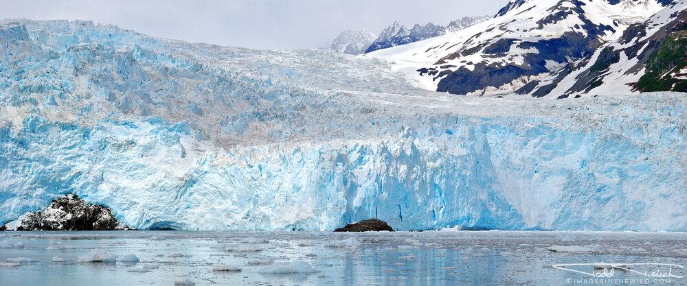 Aialik Glacier Wall
