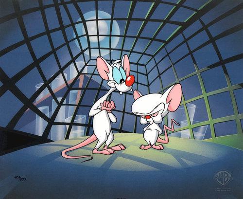 Comic mint animation art pinky and the brain take over the pinky and the brain take over the world 1995 altavistaventures Choice Image