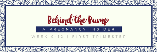 Prenatal Newsletter Header-2.png