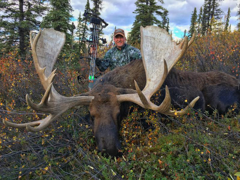 Greg Wisener with his Trophy Alaskan-Yukon moose, shot with an Iron Will Outfitters v100 broadhead.