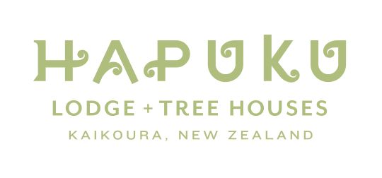 Hapuku Lodge + Tree Houses