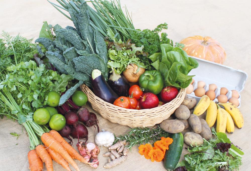 veggie_box_organic_local_farmer_goldcoast.jpg