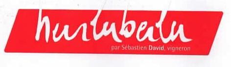 SebDavid_Hurlubeilu.jpg