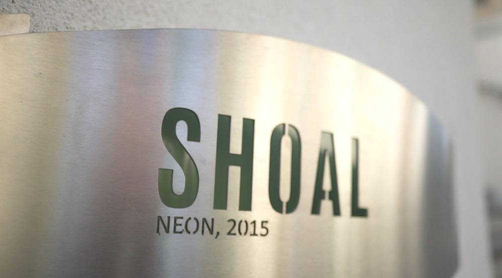 NEON - Shoal 3.jpg