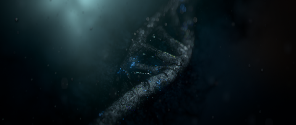 DNA_infection004.png