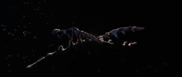 DNA.01.jpg