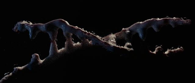 DNA.02.jpg