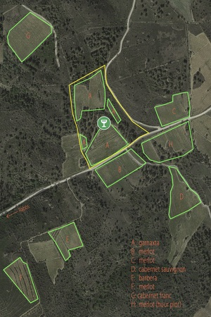 6 wijngaard map.jpg