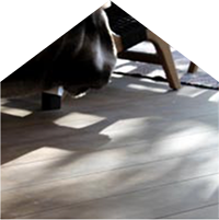 cabu-solid-oak-flooring
