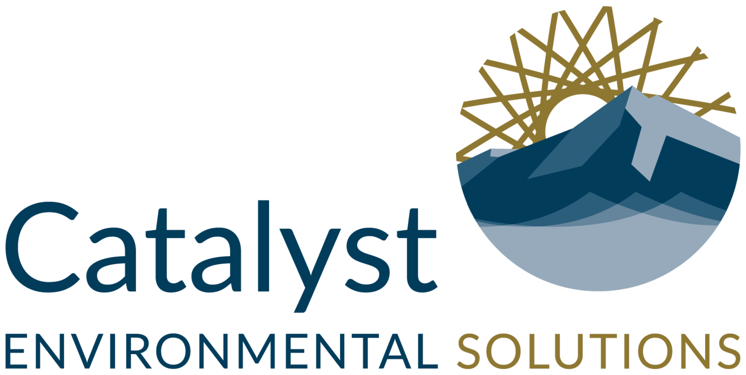 Catalyst Environmental Solutions
