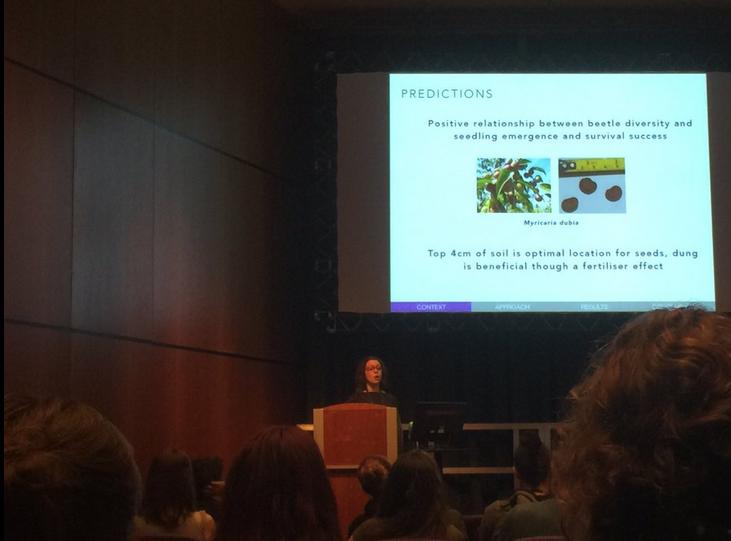 Hannah Griffiths presenting