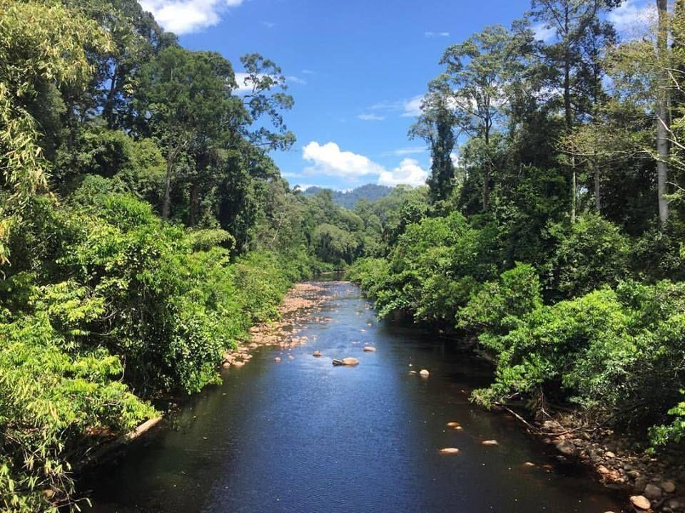 Maliau River, Sabah