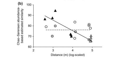Relationships between geographical distance and (a) Sørensen and (b) Chao–Sørensen similarity values using moth assemblages collected from primary (triangles) and post-logging secondary (circles) forest. Shaded points represent similarity values based on comparisons of moth assemblages across the two years of the study. Trend lines were drawn for primary (solid line) and secondary (dotted line) forests.