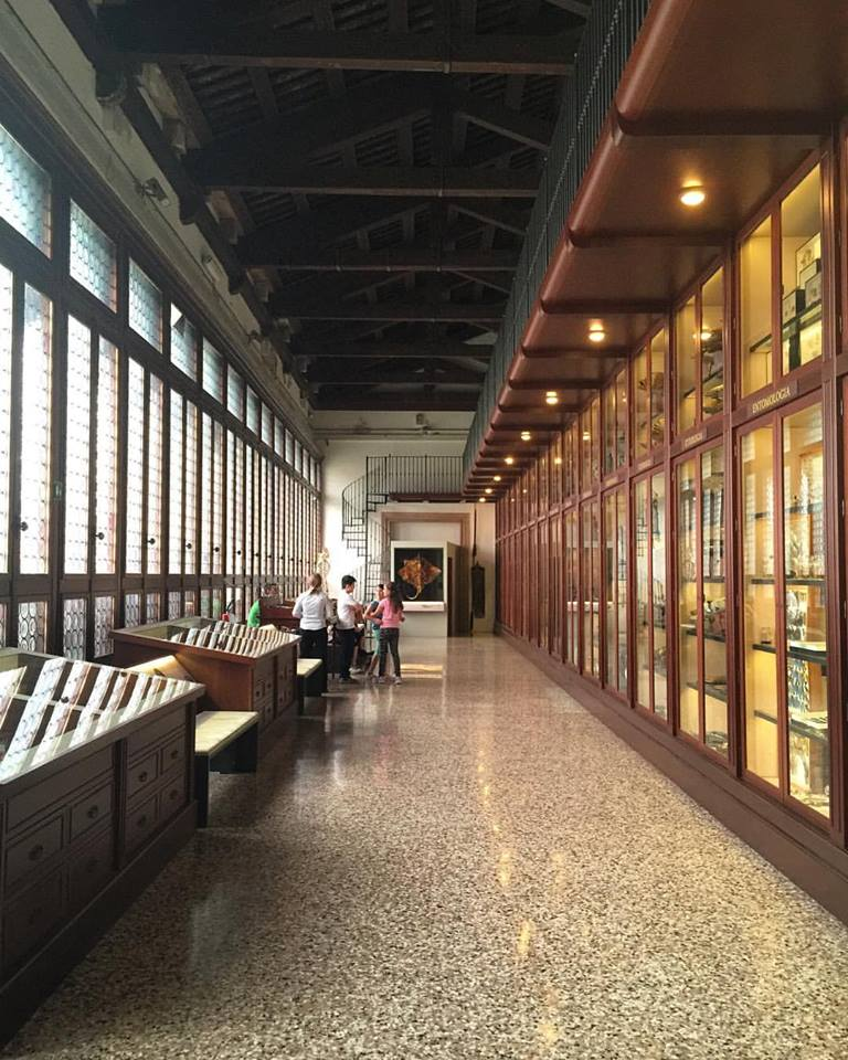 Collection hall