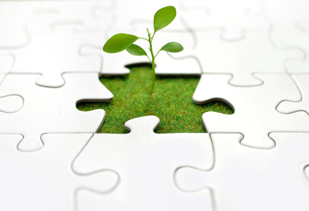 grow-your-business.jpg