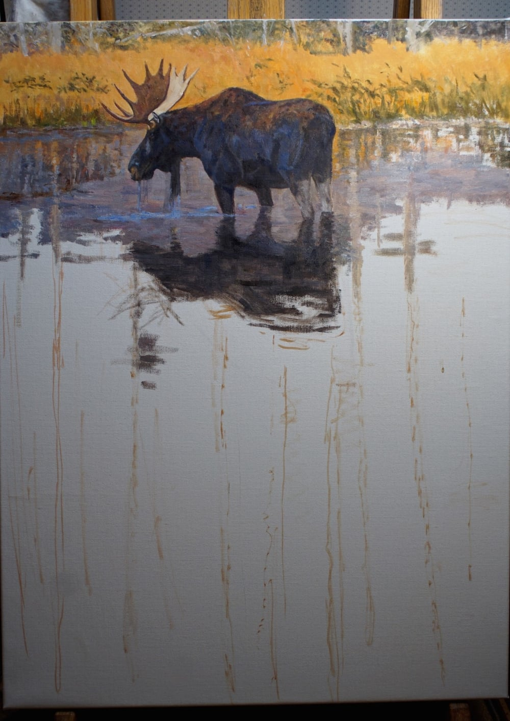 Moose and lodgepole reflections--Work in Progress
