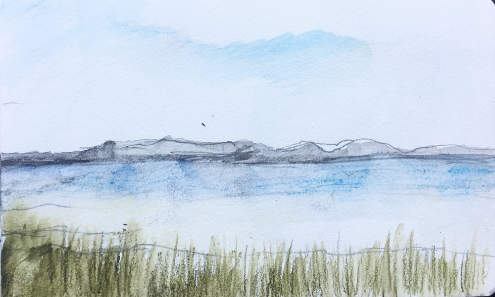waterscape            journal sketch                         beth vendryes williams