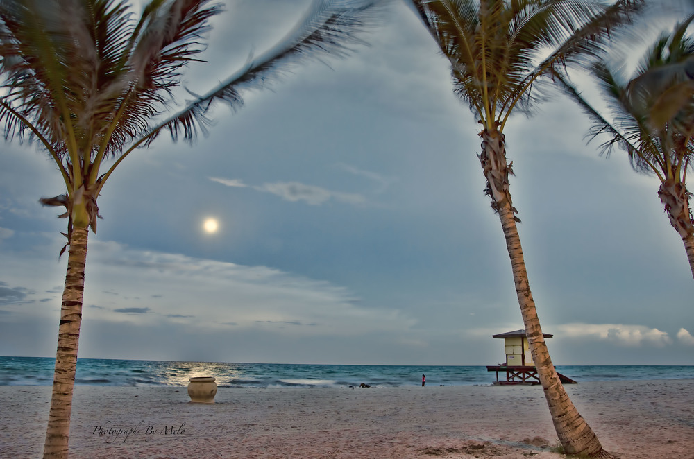 Hollywood Beach, Ft. Lauderdale, Florida