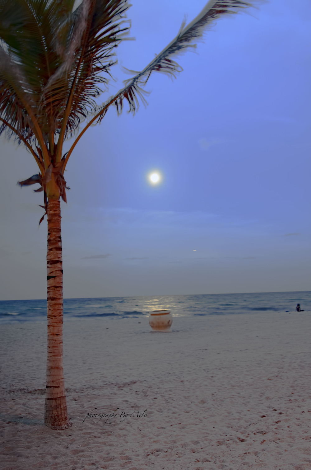 Full Moon, Hollywood Beach, Ft. Lauderdale