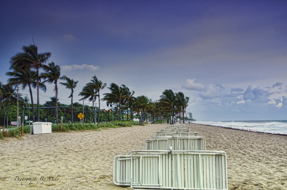 Beach chairs, Hollywood Beach, Florida