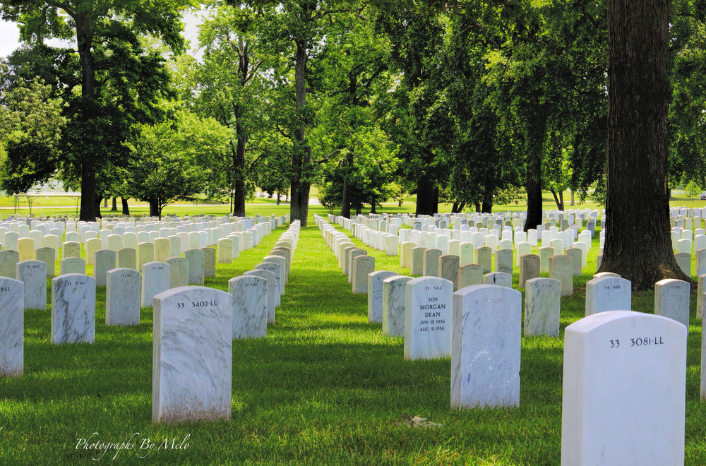 Arlington National Cementry