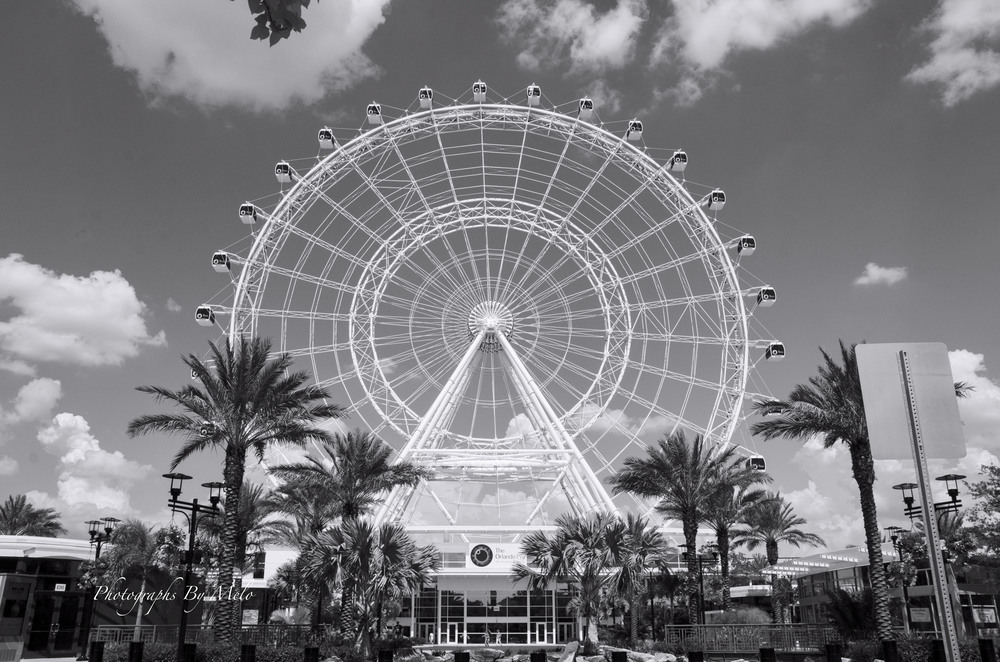 Orlando Eye - Florida