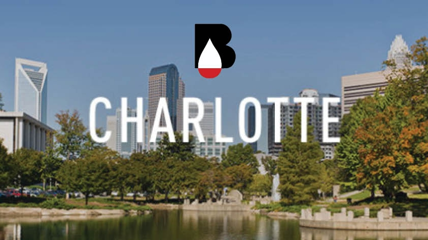 charlotte skyline-b.jpg