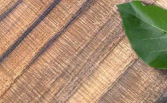 exotic teak shingle grain