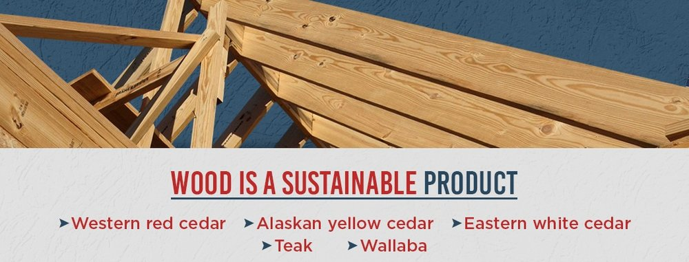 2-Wood-Is-a-Sustainable-Product.jpg