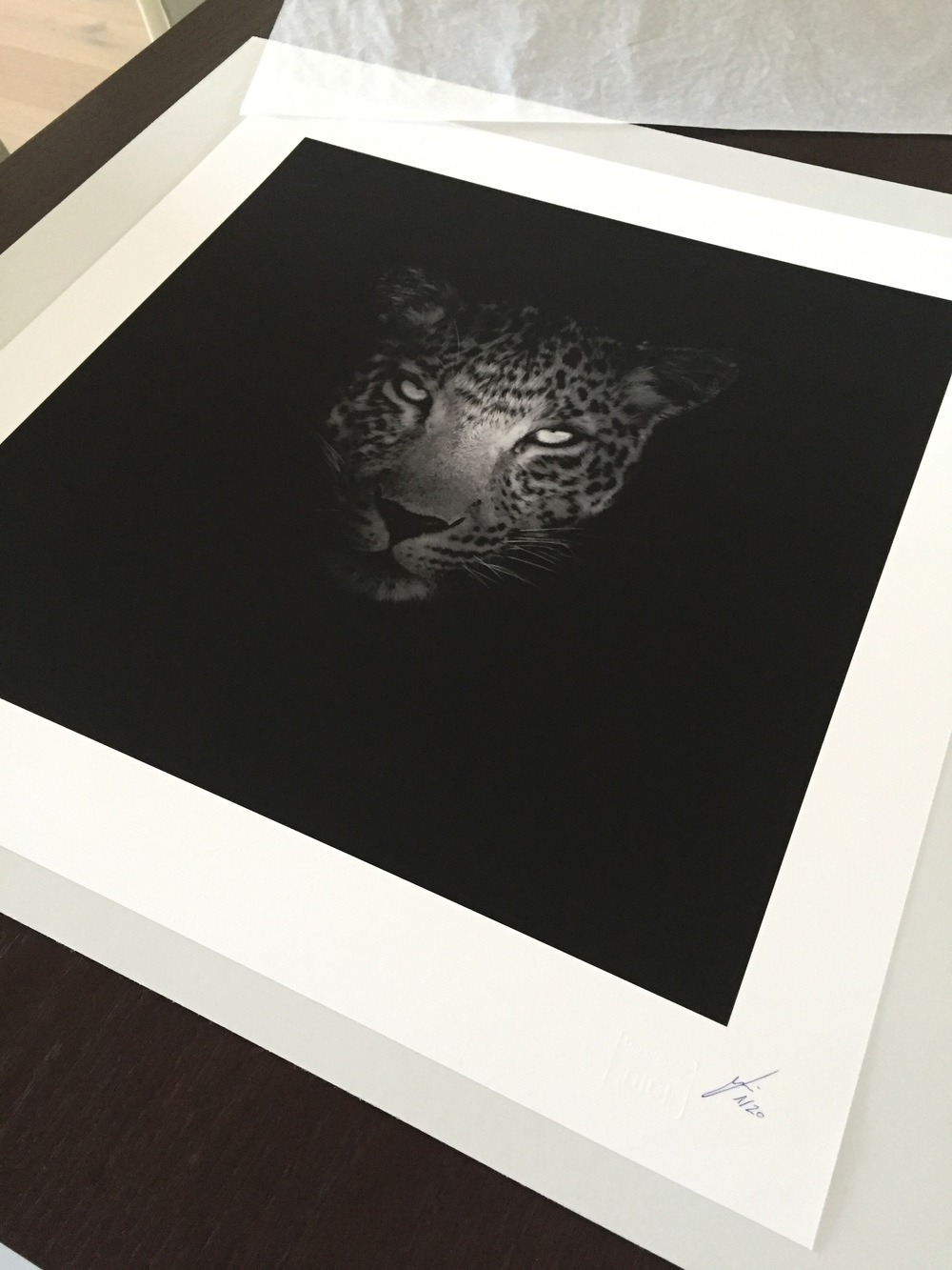 Fine Art Leopard Print