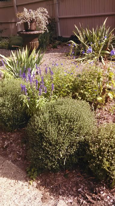 122 Garden urn 2015.jpg