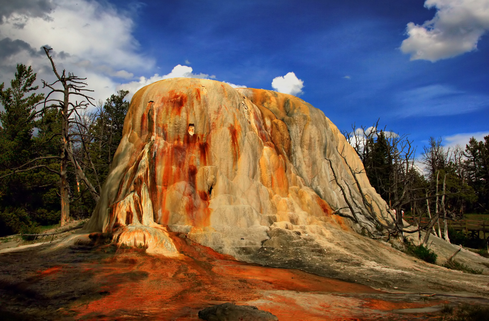 Orange Spring Mound in Yellowstone National Park